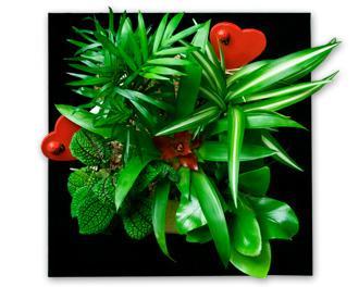 tableau vegetal coeur